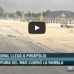 Espuma de mar en Piriápolis