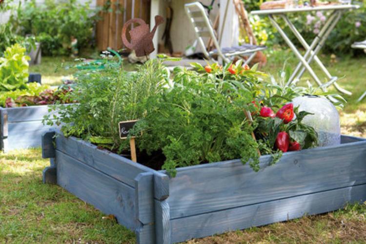 Huerta en casa en el jardin