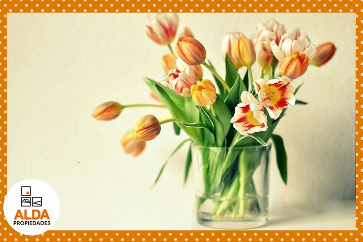Como Mantener Los Arreglos Florales Por Mas Tiempo Alda Propiedades